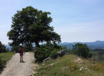 Carpegna. Camminata alla scoperta di paesaggi e delle antiche tracce della Città del sole sul Sasso Simone e Simoncello.