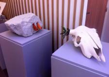 Faenza. La ceramica faentina protagonista di Argilla Aubagne, la mostra mercato francese della ceramica.
