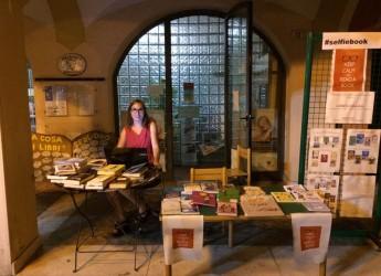 Conselice. Fresche letture per il mese di agosto. Due le proposte: sala lettura climatizzata in biblioteca e 'LibriInAcquaJoss'.