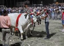 Cotignola. Grande festa con la Sfujareja, la 45ma edizione si è conclusa con un successo.