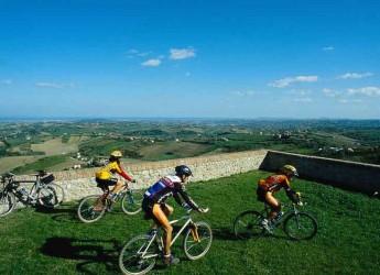 Romagna. Dall'Australia due tour operator bike a caccia d'itinerari storici in Romagna. Le vacanze in bici piacciono agli stranieri.
