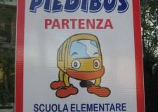Cervia. Castiglione. Riparte il servizio Piedibus alla scuola elementare. Un'iniziativa molto apprezzata dai bambini.