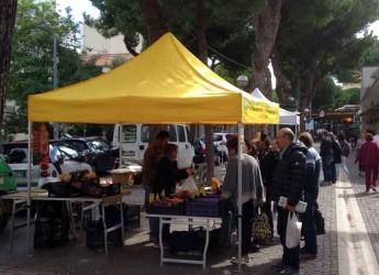 Rimini. Un successo per la prima de 'L'Orto di Marina Centro' dedicato a prodotti bio e naturali.