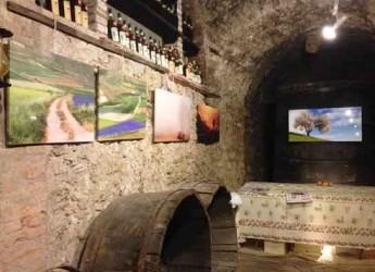 Predappio. 'Arte in cantina fra antichi vini': è la volta della pittrice Mara Biserni e del fotografo Stefano Calonici.