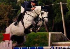 Massa Lombarda. I destrieri di Massa Lombarda si distinguono ai campionati italiani per giovani cavalli di Arezzo.