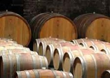 Dozza. L'azienda agricola Tizzano apre la stagione autunnale dei 'Vignaioli in Enoteca'.