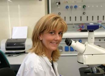 Ravenna. Elena Fabbri è il nuovo coordinatore del Campus di Ravenna.