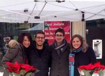 Rimini. Quattro giorni in piazza per i volontari Ail, l'associazione italiana contro le leucemie.