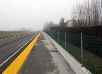 Sant'Agata sul Santerno. Lavori pubblici. Terminata la pista ciclabile sulla San Vitale lato nord.