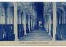 Cesena. Una mostra ripercorre le vicende della Biblioteca Malatestiana nell'ultimo secolo.