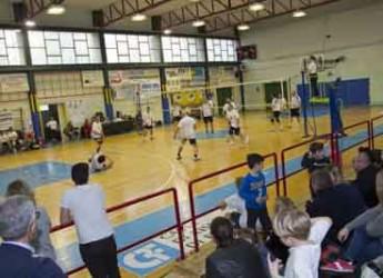 Lugo. Pallavolo. Sesta edizione del torneo 'LIM' per raccogliere fondi per la scuola.
