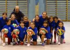 Rimini. Pallavolo. Tanti i giovani che giocano alla Pgs Omar Rimini con il metodo 'Don Bosco'.