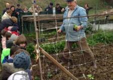 Riccione. I bambini della scuola Fontanelle hanno fatto visita agli orti dei nonni.
