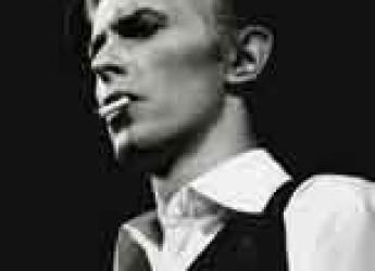 Cesena. Cinema. Primo appuntamento oggi con 'Costellazione Bowie'.