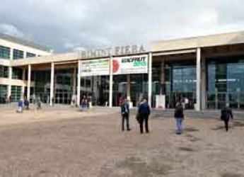 Rimini. Macfrut rimane in Romagna, opzionati i padiglioni di Rimini Fiera sino al 2018.