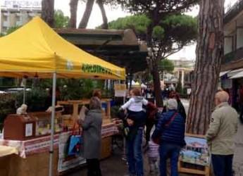 Rimini. Riapre l'orto di Marina Centro, la spesa si fa in riva al mare.