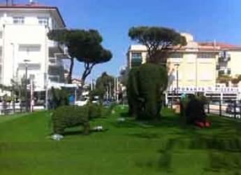 Riccione. Domani inaugura il Green Zoo, la città invasa da giraffe e elefanti verdi.