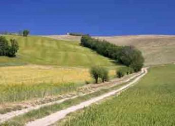 Mondaino. Il 25 aprile la tradizionale passeggiata di primavera a contatto con la natura.
