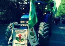 Santarcangelo. Festa del Primo Maggio con 'L'agricoltura in piazza'. Sfilate, tradizioni, divertimento e balli.