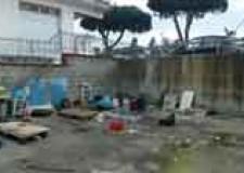 Rimini. La Polizia Municipale interviene per rimuovere quattro veicoli abbandonati. Avviata la pulizia dell'area.