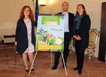 Bassa Romagna. Naturalmente in Bassa Romagna. Un mese di eventi nei comuni dell'Unione per scoprire il territorio.