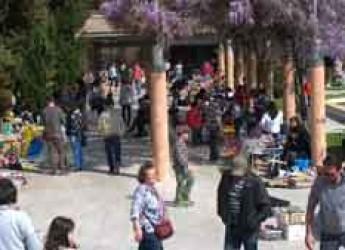 Savignano sul Rubicone. Riprende il mercatino pomeridiano in piazza Giovanni XXIII, domenica 8 si taglia insieme la torta