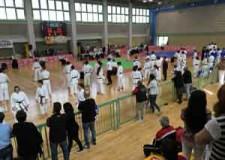Cesena. Il grande karate ha fatto tappa in città. In palio la partecipazione ai Nazionali di Monza.