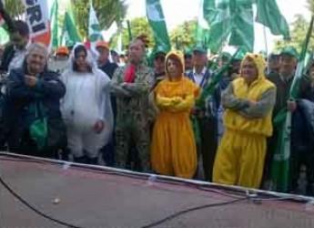 Bologna. Protesta agricoltori: 'Basta burocrazia, non facciamoci spennare come polli'.