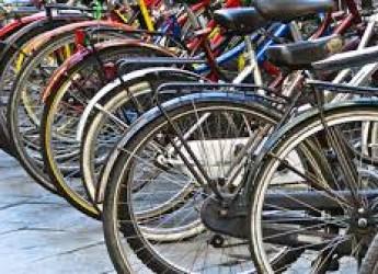 Fusignano. Escursioni serali in biciclette. Mercoledì 29 giugno.