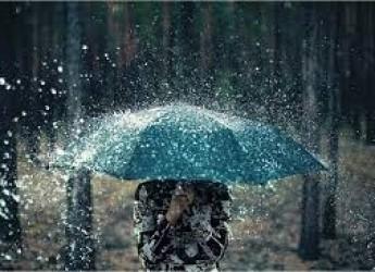 Rimini. Frequenti e intense piogge. Aumento del rischio di proliferazione delle zanzare.