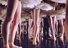 Cesena. Teatro Bonci. Saggio di fine anno di FAD Ateneo Danza.