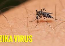 Lecce. Ultime informazioni dall'ECDC relative alla diffusione del virus in Europa.