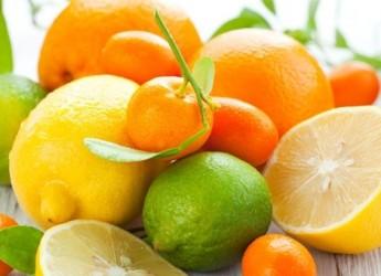 Arance e limoni possono combattere malattie causate da obesità, tra cui il diabete. Lo rivela un nuovo studio brasiliano