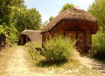 Unione: 'Vivi il verde', le iniziative in Bassa Romagna