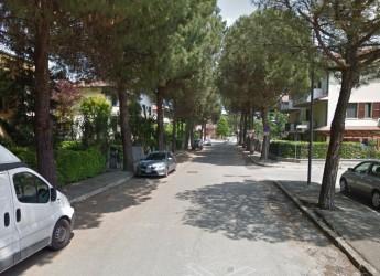 Savignano sul R., Via Bernardini: nuovo look grazie a rotonda, asfaltatura, illuminazione a led e 23 nuovi alberi