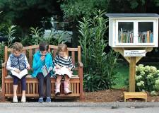 """Cotignola: al parco Pertini inaugura la """"Little free library"""", piccola biblioteca per il libero scambio di libri"""