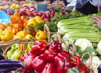 Emilia Romagna, se la frutta sorride, gli ortaggi esultano. Nei primi sei mesi 2016, registrato un +2%