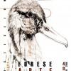 Ravenna. 'Forese Arte Festival', dal 4 novembre a Castiglione quattro serate dedicate a cinema, teatro e pittura