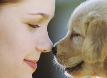 Caro Fido, di te mi 'fido'. A Ravenna al via un corso per proprietari di cani