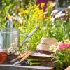Lugo, aperte le iscrizioni per il corso di giardinaggio 'Vestiamo la città'