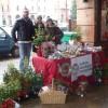 Mercatini di Natale a Ravenna e Faenza. Appuntamento con la solidarietà nei punti IOR