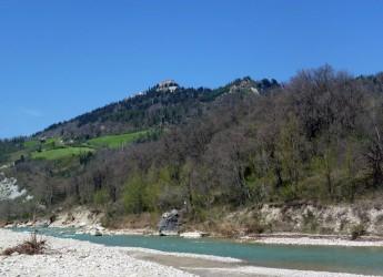 Emilia Romagna. Legname negli alvei dei fiumi:privati autorizzati alla raccolta.