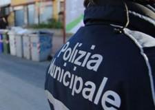 Emilia Romagna. Nomine al comune di Rimini: Roberto Paci, nuovo 'vice' della Polizia municipale.