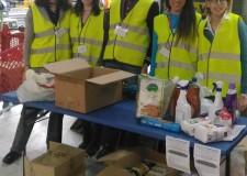 Cesena. Quartieri solidali 2017: straordinario successo di Colletta alimentare ( sabato 11 marzo).