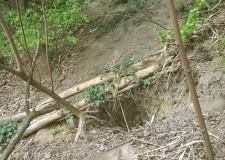 Emilia Romagna. Lugo: lavori lungo il Canale dei mulini. Rimossi degli alberi e risagomati gli argini.