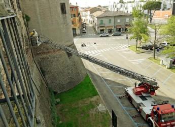 Lugo. Rimossi due alveari dalla Rocca. L'intervento affidato ad un apicoltore e ai Vigili del fuoco.