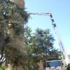 Bassa Romagna. Cotignola: restyling per la torre d'Acuto. Con il nuovo 'suono' del Campanone.