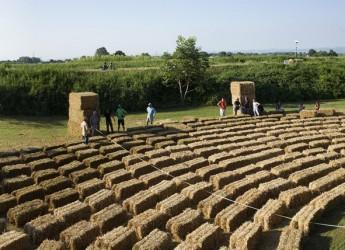 Cotignola. L'arena delle balle di paglia. Per un mondo di felliniani e di filosofi di campagna.