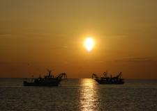 Ravenna. Talk show televisivo 'Pesca sostenibile: conciliare l'alimentare con l'ambiente di terra e di mare'.