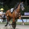 Cesena. Le corse di sabato 5 agosto ( ore 21). Gran premio Città di Cesena- Trofeo Algida.
